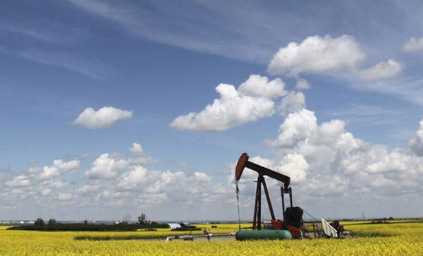 Cover Letter For Petroleum Engineer Resume